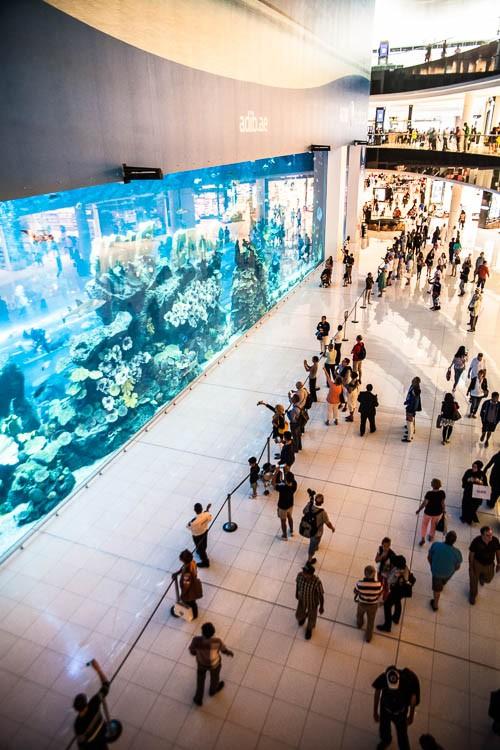 Die Dubai Mall mit dem weltgrößten Einkaufszentren-Aquarium