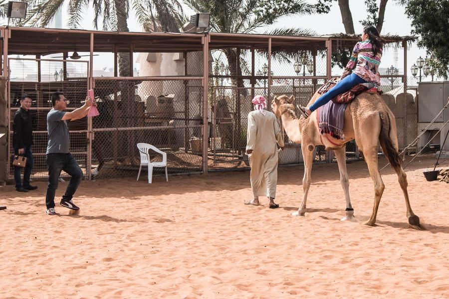 Touristen beim Kamelreiten in Abu Dhabi